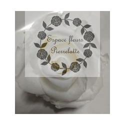 Bouton de rose éternelle blanc