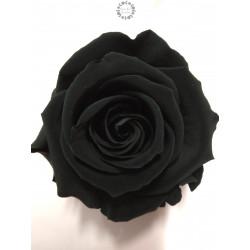 Bouton de rose éternelle noir