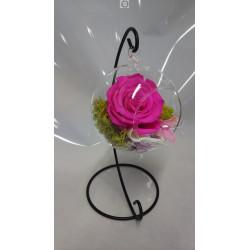 Rose éternelle rose vif...
