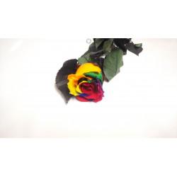 Rose éternelle multicolore...