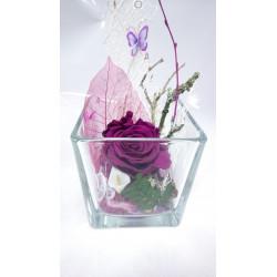 Rose éternelle prune Cube